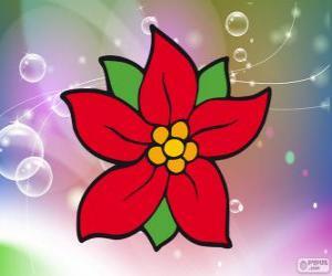 Układanka Świąteczne kwiat