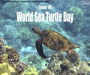 Układanka Światowy Dzień Żółwia Morskiego