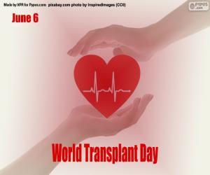 Układanka Światowy Dzień Transplantacji