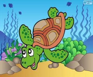 Układanka Żółw morski