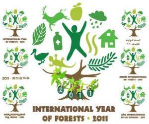 Układanka 2011 Międzynarodowy Rok Lasów