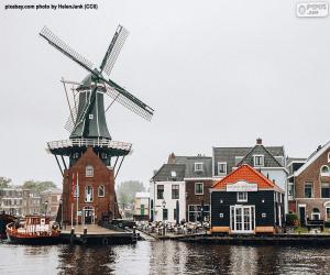 Układanka Adriaan Mill, Haarlem, Holandia