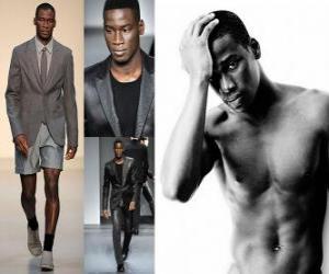 Układanka Agbodji David francuski model