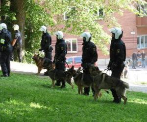 Układanka Agenci policji z psami