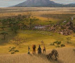 Układanka Alex, Marty, Melman, Gloria obserwowano ogromne równiny Afryki