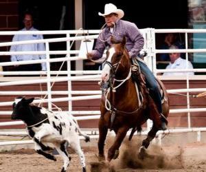Układanka Amerykański Rodeo