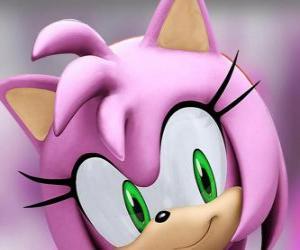 Układanka Amy Rose jest różowy jeż z zielonymi oczami, jest szaleńczo zakochany w Sonic