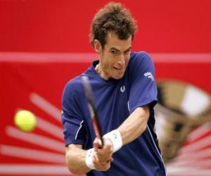 Układanka Andy Murray gotowa do zamachu