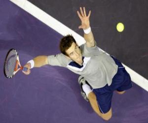 Układanka Andy Murray przygotowując się do uderzenia służyć