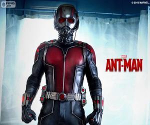 Układanka Ant-Man