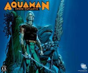 Układanka Aquaman był jednym z założycieli zespołu Liga Sprawiedliwych lub JLA