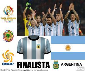 Układanka ARG finalista, Copa America 2016