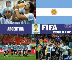 Układanka Argentyna obchodzi jego klasyfikacja, Brazylia 2014