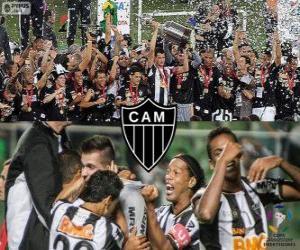 Układanka Atlético Mineiro, Mistrz Copa Libertadores 2013