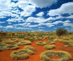 Układanka Australijski outback