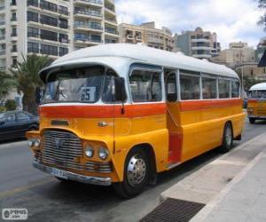 Układanka Autobus Malta
