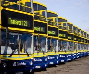 Układanka Autobusy z Dublina w parking