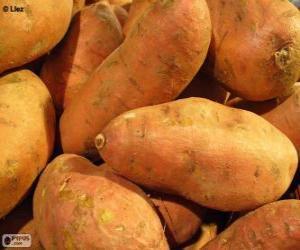 Układanka Batat, patat lub słodki ziemniak