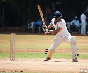 Układanka Batsman Krykiet