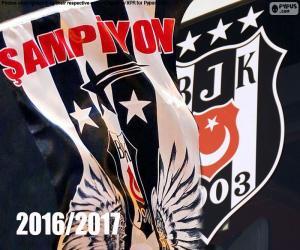Układanka Beşiktaş, mistrz 2016-2017