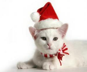 Układanka Biały kot z Santa Claus kapelusze