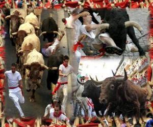 Układanka Bieg byków lub Encierro, Sanfermines. Pamplona, Navarra, Hiszpania. San Fermin festiwal od 6 do 14 lipca