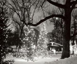 Układanka Boże Narodzenie w Parku