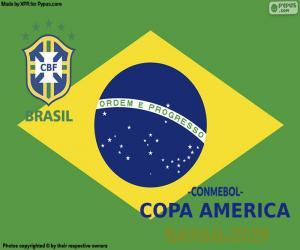 Układanka Brazylia, mistrz Copa America 2019