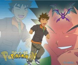 Układanka Brock, początkowo liderem Pewter City Gym (Cyna), specjalizujący się w rock-Pokémon typu.