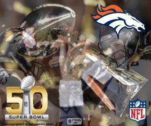 Układanka Broncos, Super Bowl 2016 mistrzowie