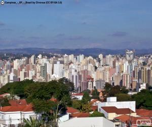 Układanka Campinas, Brazylia