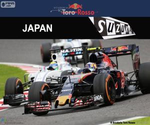 Układanka Carlos Sainz Jr, Grand Prix Japonii 2016