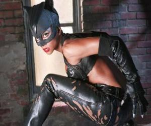 Układanka Catwoman, Kobieta Kot, złodziej klejnot i rywal Batmana, dla których czuje się silny romantyczna atrakcja