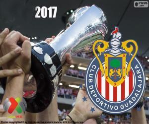 Układanka C.D. Guadalajara, mistrz Clausura 2017