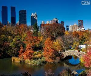 Układanka Central Park, Nowy Jork