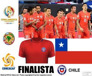 Układanka CHI finalistą, Copa America 2016