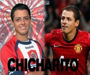 Układanka Chicharito