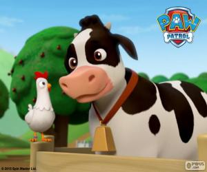 Układanka Chickaletta i Bettina, PAW Patrol