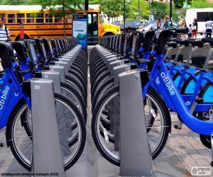 Układanka Citi Bike, Nowy Jork