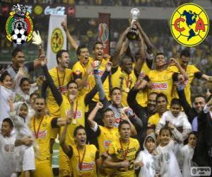 Układanka Club America, mistrz turnieju Clausura 2013, Meksyk