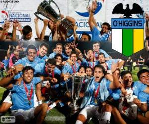 Układanka Club Deportivo O'Higgins, Mistrz chilijski Apertura 2013