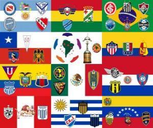 Układanka Copa Libertadores 2011