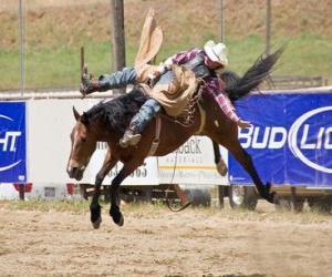 Układanka Cowboy koniu hodowli w rodeo