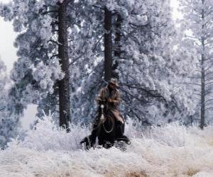Układanka Cowboy lub jazdy kowbojem