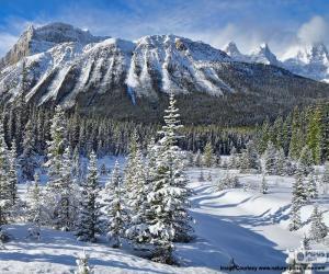 Układanka Crowfoot Mountain, Kanada