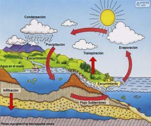 Układanka Cykl wody (es)