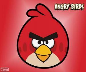 Układanka Czerwony Ptak (Red Bird)