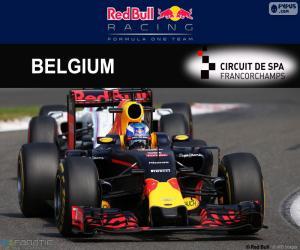Układanka Daniel Ricciardo, GP Belgii 2016