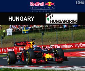 Układanka Daniel Ricciardo, GP Węgrzech 2016