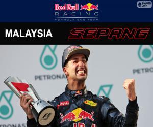Układanka Daniel Ricciardo, Grand Prix Malezji 2016